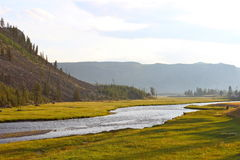 Madison River in Yellowstone Nationalpark Lizenzfreies Stockbild