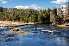 Madison rzeka, Wyoming fotografia stock