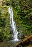 Madison spadki, Olimpijski park narodowy Fotografia Royalty Free