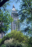 Madison Square Park New York. The spring foliage of Madison Square Park screens buildings around it Royalty Free Stock Images
