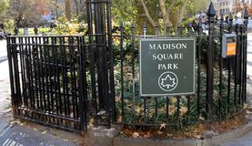 Madison Square Park In NY Arkivbilder