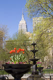 Madison Square Park, NY royalty free stock photography