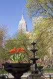 Madison Square Park, NY Royalty Free Stock Photography