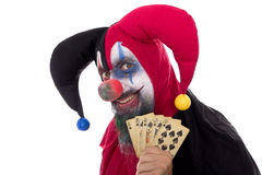 Madly Fool holding playing cards, concept gambling,  on Royalty Free Stock Images