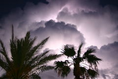 Madness 2. Lightning storm Stock Photos