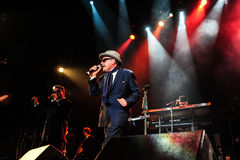 Madness concert Royalty Free Stock Photography