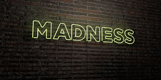 MADNESS -Realistic Neon Sign on Brick Wall background - 3D rendered royalty free stock image Stock Photography
