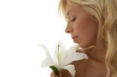 madonna лилии Стоковое Изображение