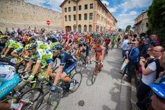 Madonna di Campiglio, Italië 24 maggio 2015; Professionele fietsers tijdens Giro D'Italia Stock Foto's