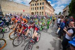 Madonna di Campiglio, Italië 24 maggio 2015; Professionele fietsers tijdens Giro D'Italia Stock Fotografie