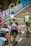 Madonna di Campiglio, Italia 24 maggio 2015; Davide Formolo during a stage of Giro D'Italia Royalty Free Stock Photography