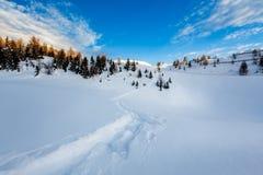 Madonna di Campiglio Ski Resort in den italienischen Alpen Stockfotografie