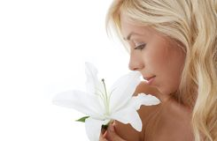 Madonna lily blond Stock Photo