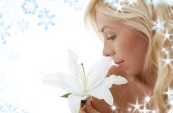 Madonna lily blonde stock image
