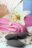 Madonna lily spa stones fun Royalty Free Stock Photos