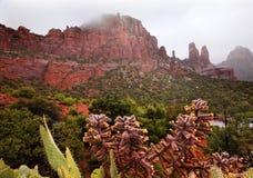Madonna Nonnen-roter Felsen-Schlucht-Regen Sedona Arizona Stockfoto