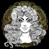 Madonna, señora del dolor Dedicación al corazón inmaculado de Ble ilustración del vector