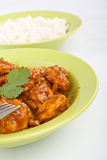 Madras Chicken Curry with Rice Royalty Free Stock Image