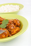 Madras Chicken Curry with Rice Stock Photo
