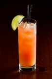 Madras, vodka, cranberry and orange juice Royalty Free Stock Photography