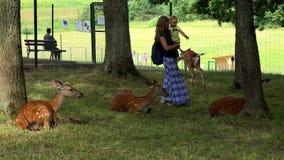 Madre alegre con la muchacha de la hija que goza de animales de las huevas en jardín zoológico almacen de metraje de vídeo