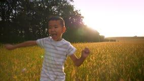 Madre asiatica amorosa che aspetta suo figlio per eseguirla ed abbracciare allegro nel campo giallo sul tramonto archivi video