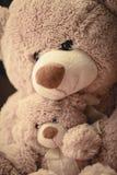 Madre che abbraccia il suo orsacchiotto adorabile del figlio immagine stock libera da diritti