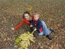 Madre con el hijo con las hojas de otoño Foto de archivo libre de regalías