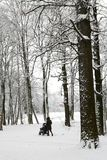 Madre con el niño en caminata sidercar en parque del invierno Fotografía de archivo libre de regalías