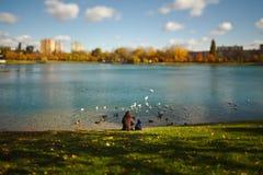 Madre con el niño que se sienta por el lago y los pájaros de alimentación - lente del cambio de la inclinación imagen de archivo