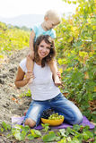 Madre con il figlio nella vigna dell'uva Immagine Stock