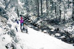 Madre con il passeggiatore di bambino nella foresta di inverno, tempo della famiglia delle donne di rimorchio immagine stock libera da diritti