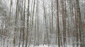 Madre con il suo bambino nel passeggiatore che cammina nel bello parco nevoso nell'inverno stock footage