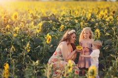 Madre con los niños en girasoles Imágenes de archivo libres de regalías