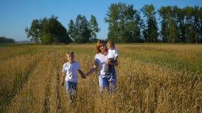Madre con los niños que corren en campo de trigo almacen de metraje de vídeo