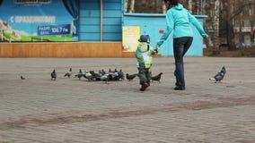 Madre con un niño que persigue palomas metrajes