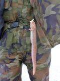 Madre-de-anguille Immagine Stock Libera da Diritti