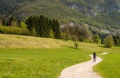 Madre della viandante con il bambino vicino al lago scScenic Bohinj con i suoi dintorni verdi in Slovenia Fotografia Stock Libera da Diritti