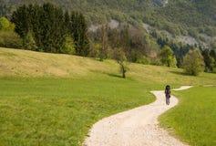 Madre della viandante con il bambino vicino al lago scScenic Bohinj con i suoi dintorni verdi in Slovenia Fotografia Stock