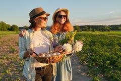 Madre e figlia teenager con un canestro delle uova fresche nel giardino, ora dorata fotografia stock libera da diritti