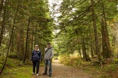 Madre e figlio che camminano nella foresta Fotografia Stock