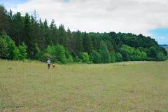 Madre e figlio nella foresta verde per una camminata Immagini Stock