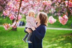 Madre e hija que disfrutan de la estación de la flor de cerezo foto de archivo libre de regalías