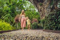 Madre e hijo que caminan en un pavimento de adoquín texturizado, Reflexolog Imagen de archivo