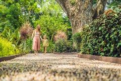 Madre e hijo que caminan en un pavimento de adoquín texturizado, Reflexolog Imagenes de archivo