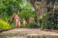 Madre e hijo que caminan en un pavimento de adoquín texturizado, Reflexology Piedras del guijarro en el pavimento para el reflexo Imagenes de archivo