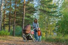 Madre e hijos que caminan en el bosque del otoño Imágenes de archivo libres de regalías