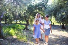 Madre e tre bambini in oliveto Immagini Stock