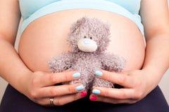 Madre embarazada que muestra su vientre y que celebra un peluche Foto de archivo libre de regalías