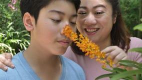 Madre felice e figlio asiatici della famiglia che camminano nel giardino dell'orchidea con il fronte di sorriso archivi video